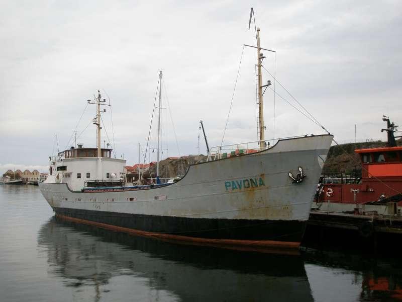 Image of PAVONA