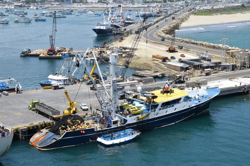 Image of CARIBE TUNA