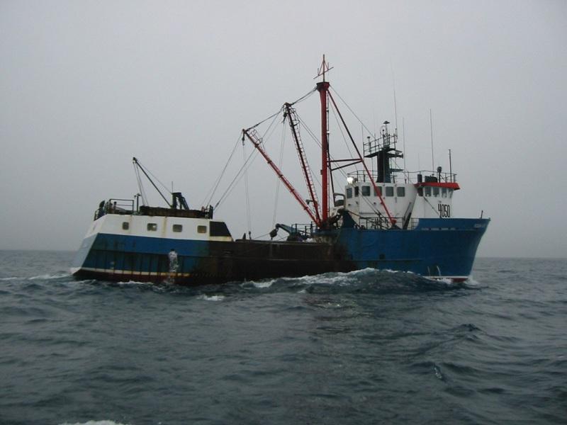 Image of OCEAN LADY