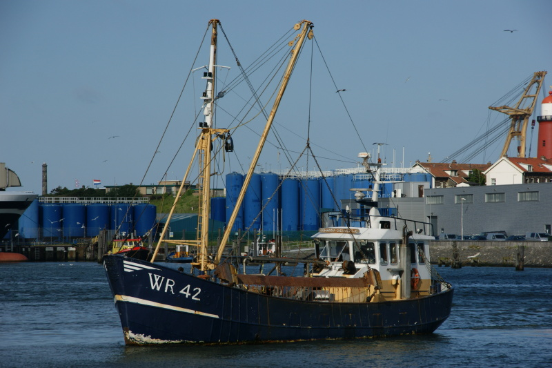 Image of WR 126 VERTROUWEN