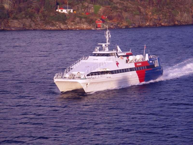 Image of IBISCUS