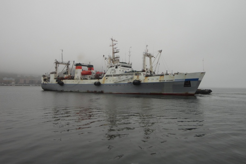 Image of MATVEY KUZMIN
