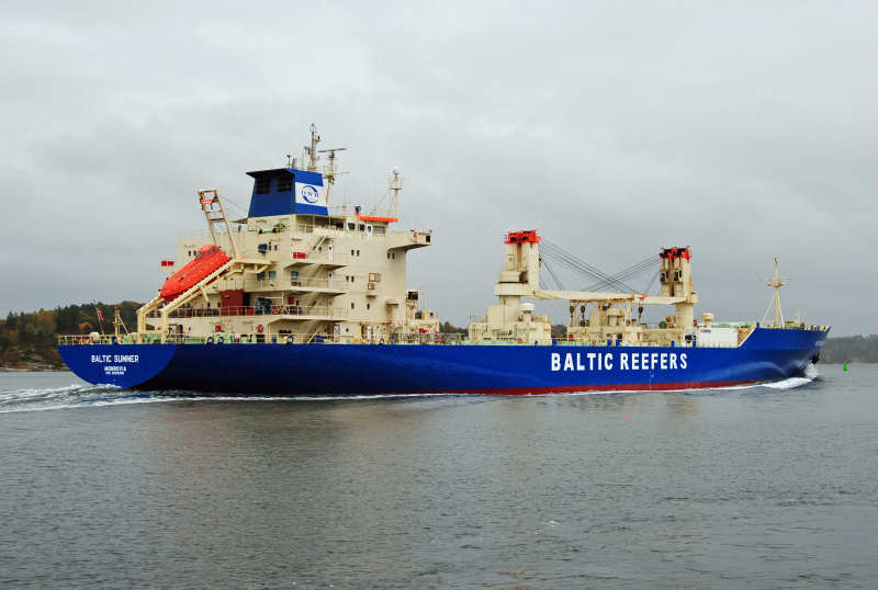 Image of BALTIC SUMMER