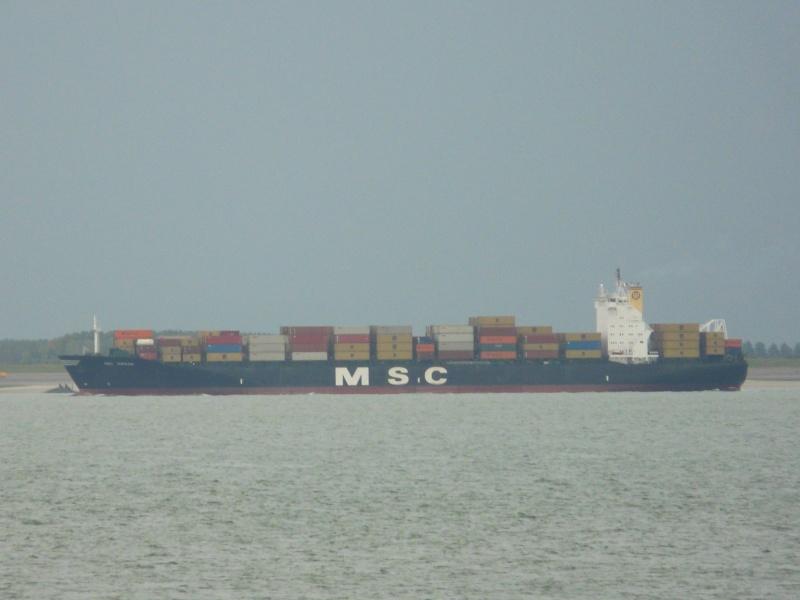 Image of MSC JORDAN