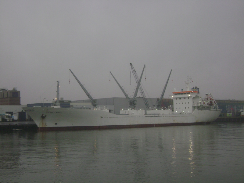 Image of SIERRA LAUREL