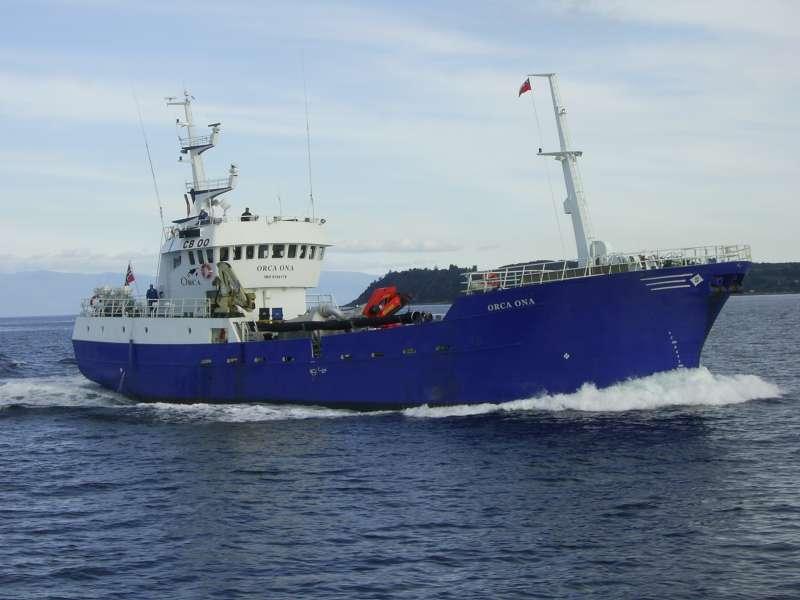Image of ORCA ONA
