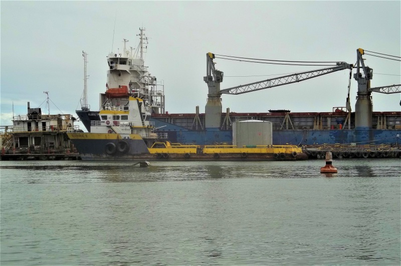 Image of SEA HORSE II
