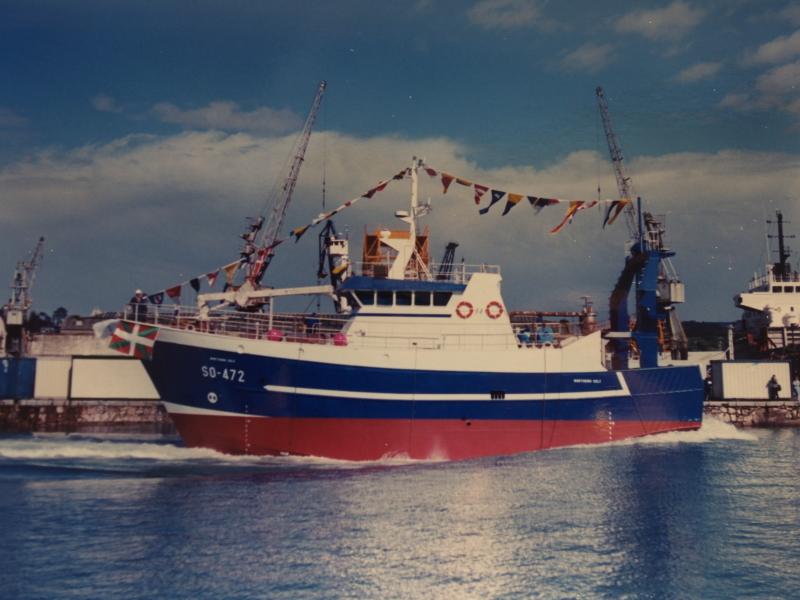 Image of NORTHERN CELT