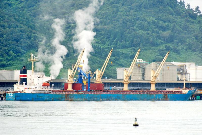 Image of XING QIANG 9