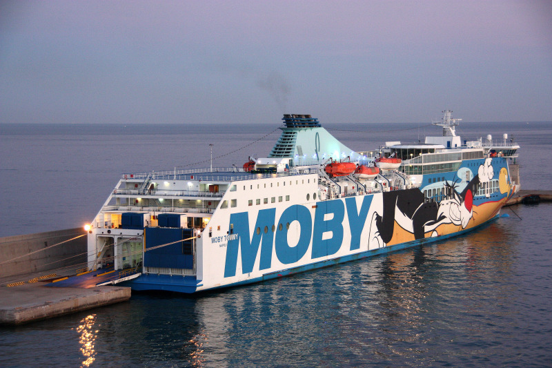 Image of MOBY TOMMY