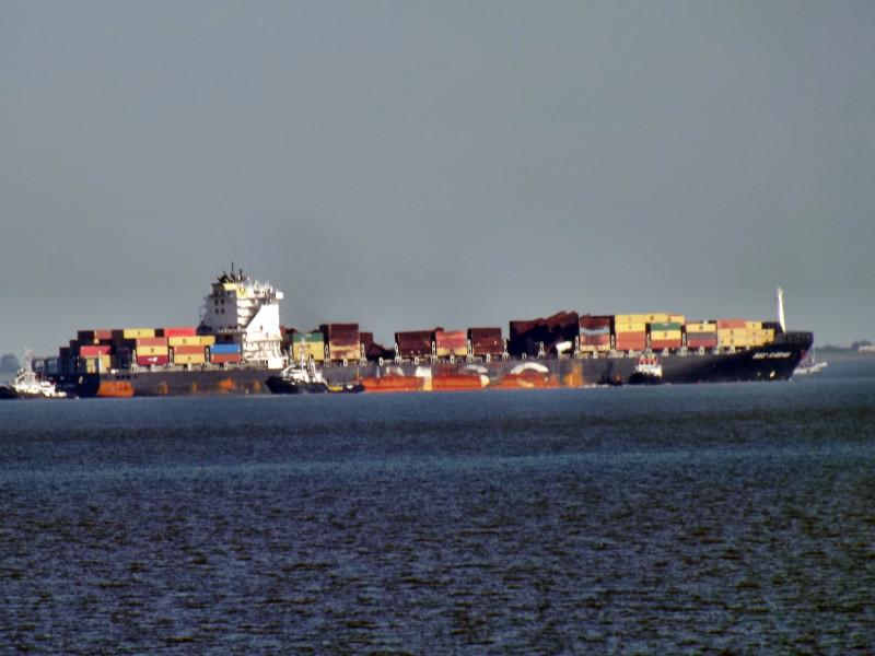 Image of MSC FLAMINIA