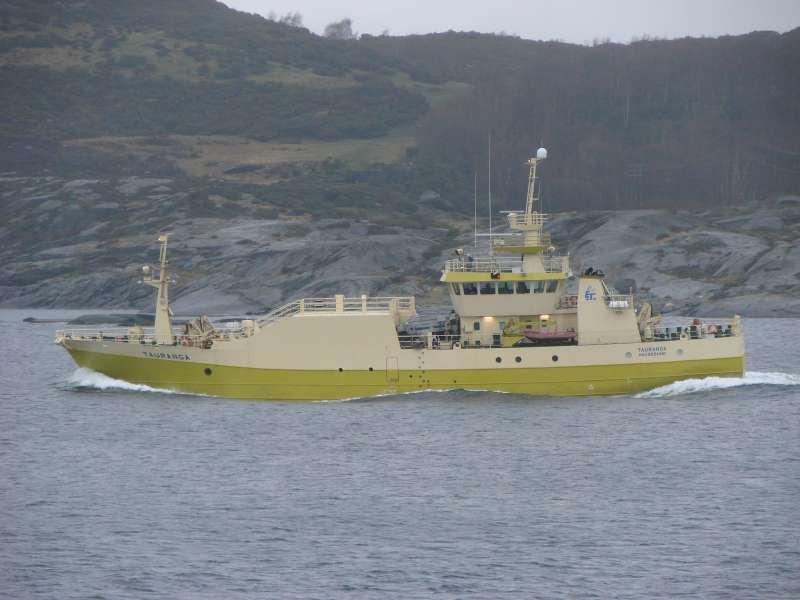 Image of TAURANGA