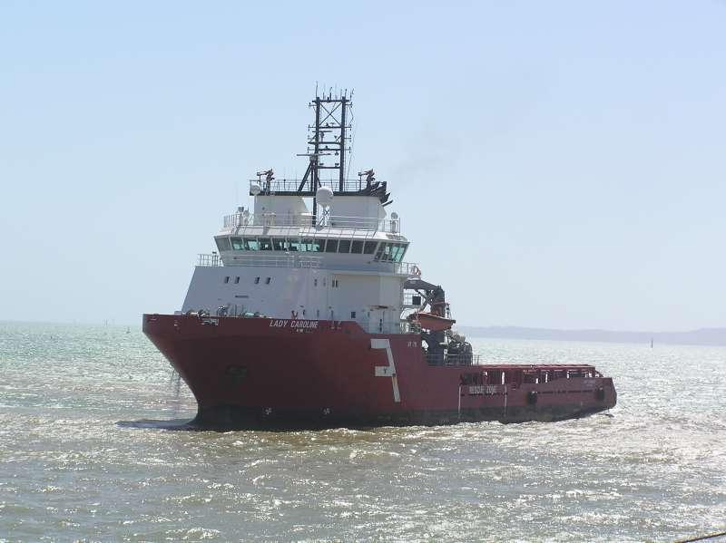 Image of SEA MEADOW 08