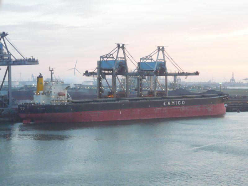 Image of SEA TAURUS