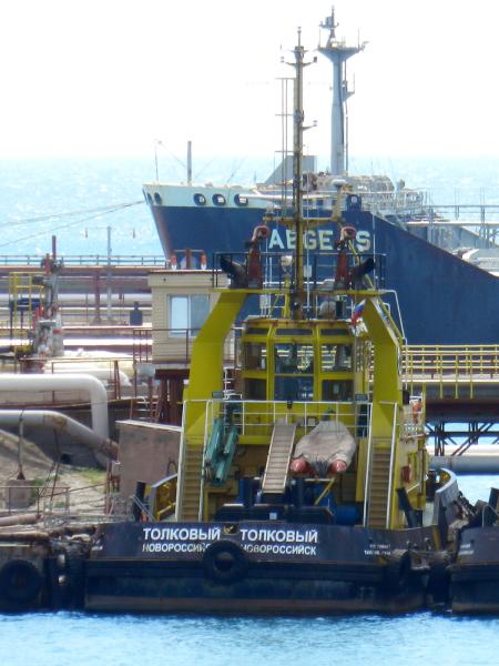 Image of TOLKOVYY