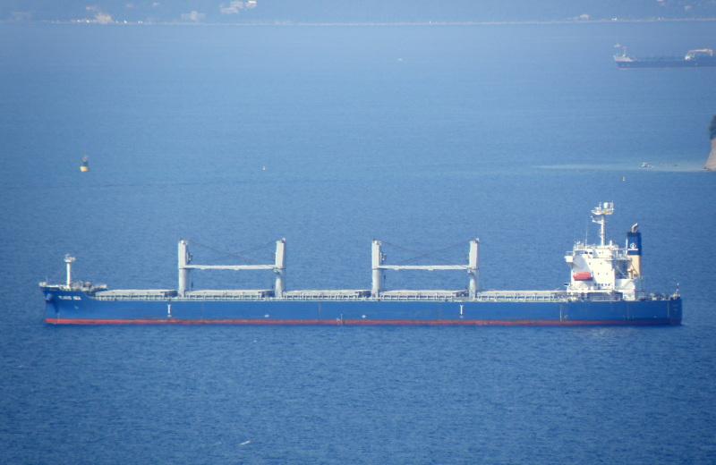 Image of PLACID SEA