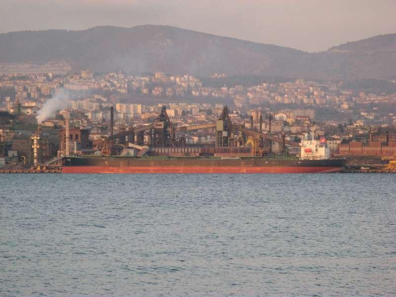 Image of ALFA