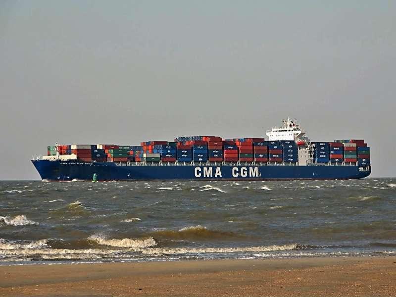 Image of CMA CGM BLUE WHALE