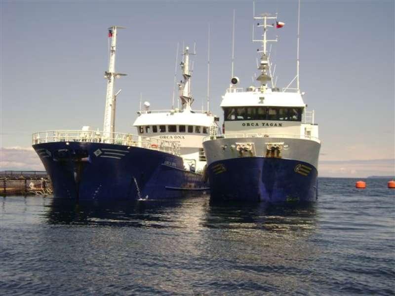 Image of ORCA YAGAN
