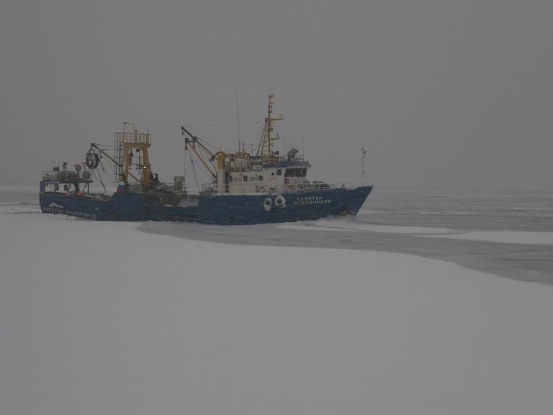 Image of KAPITAN MUKOVNIKOV