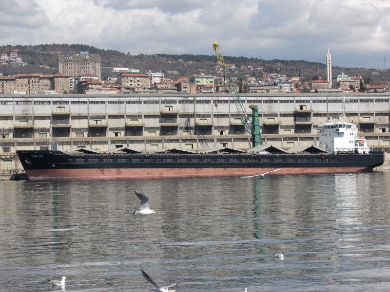 Image of SEA TRADER