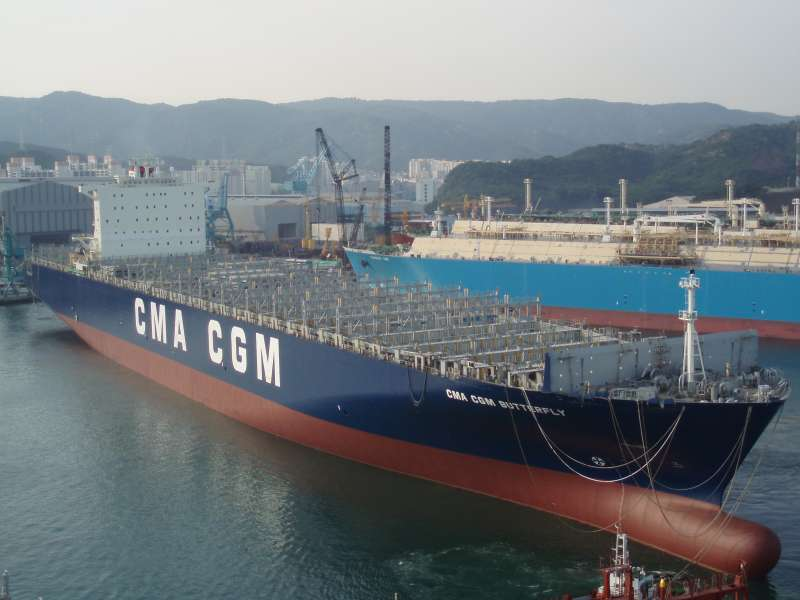 Image of CMA CGM BUTTERFLY