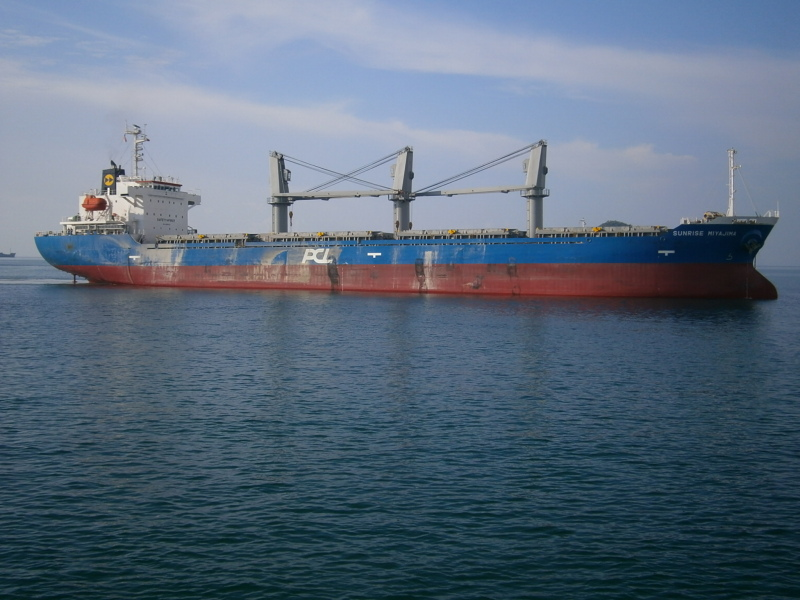 Image of BMC ENDORA