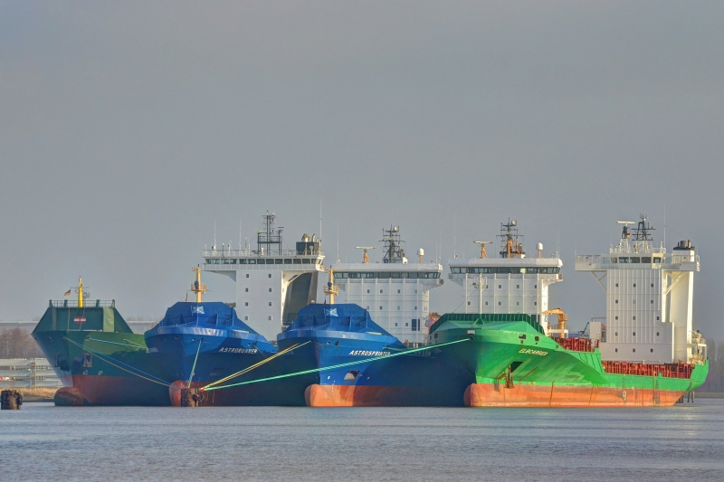 Image of ELBCARRIER