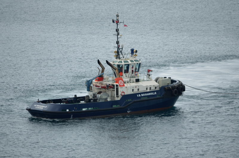 Image of VB BOUGAINVILLE