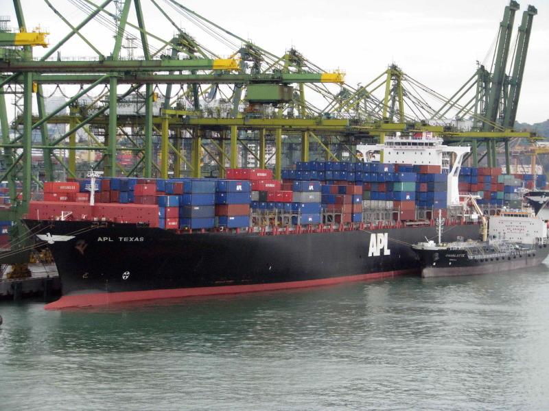 Image of MSC NOA
