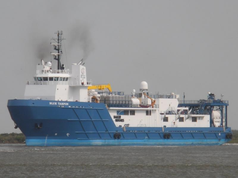 Image of BLUE TARPON