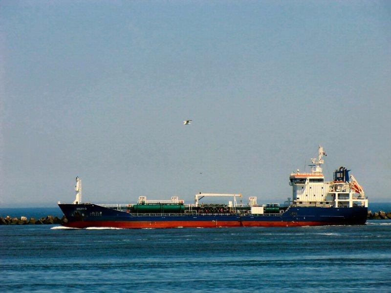 Image of BORINGIA SWAN
