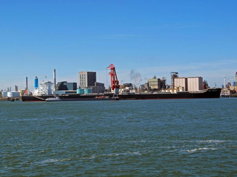 Image of SEA TRIUMPH