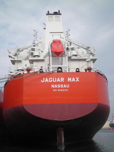 Image of JAGUAR MAX