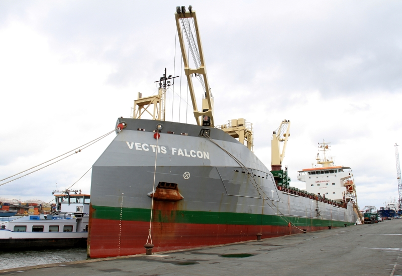 Image of VECTIS FALCON