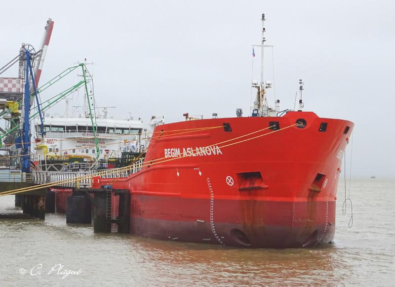 Image of CAMINERO